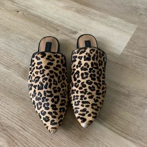 Steve Madden leopard mules
